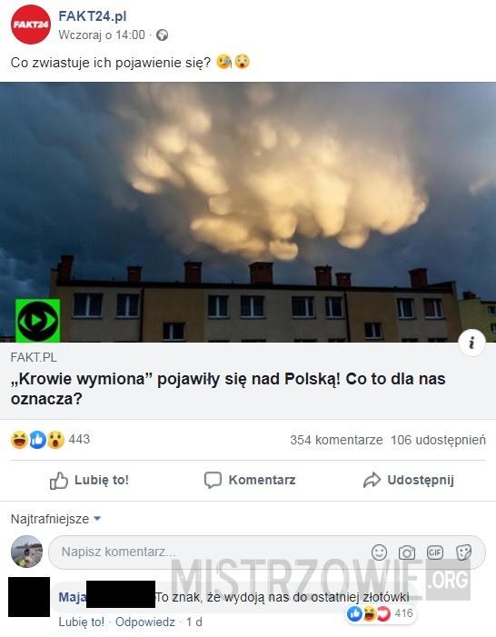 Polska Krowa –